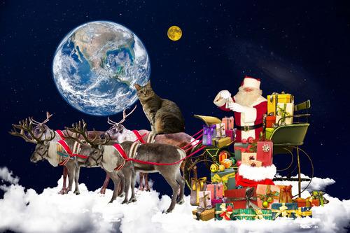 2018クリスマス.jpg